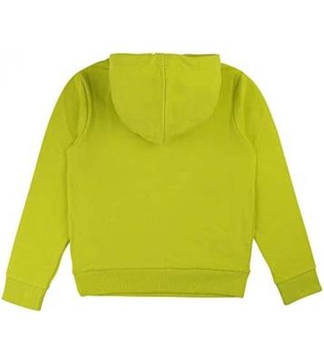 Sweat à capuche vert